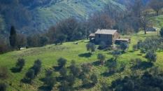 valley_civitadibagnoregio_cameraandcarryon-jpg
