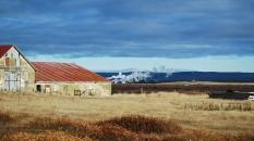 icelandfarm_ourstory_cameraandcarryon-jpg