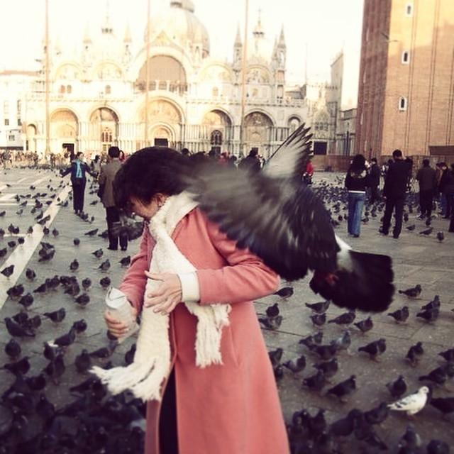 Brilliant. #throwbackthursday #feedingpigeons #venice #2007