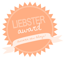 Liebster Award  - we answer questions from travel bloggers and nominate some of our favorites! | CameraAndCarryOn.com