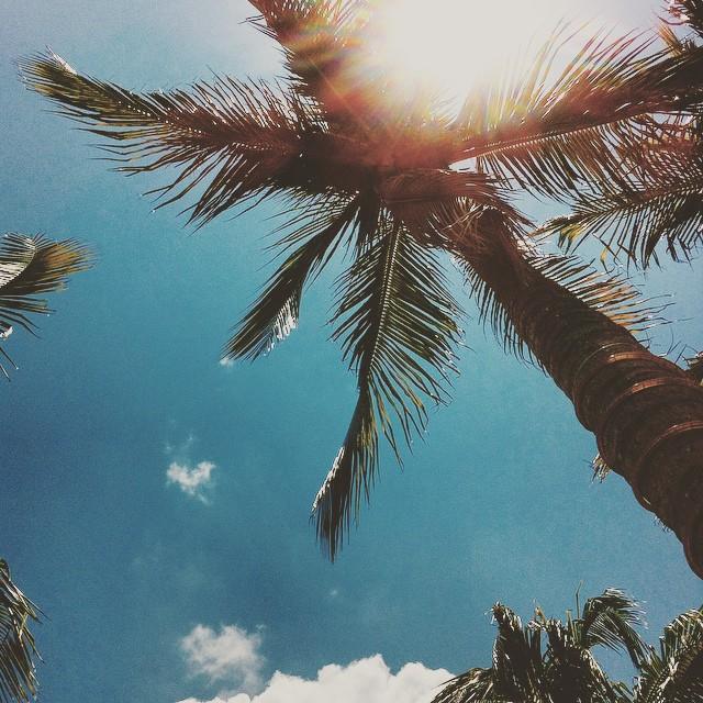 Hello, Mr. Sun. ?☀️