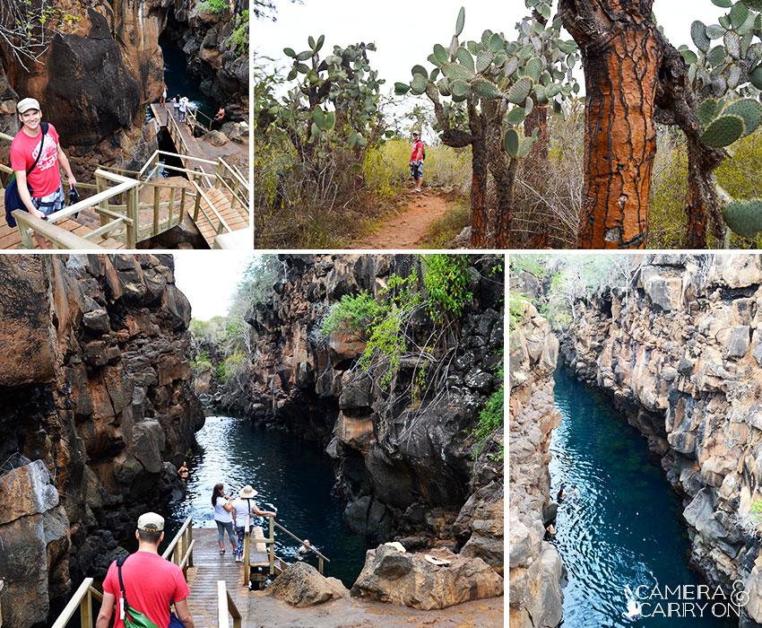5 Things to Get Excited About in Santa Cruz, Galapagos   CameraAndCarryOn.com