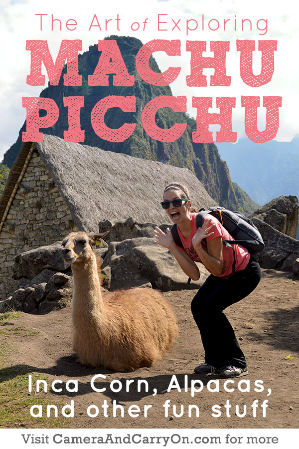 Inca Corn and Alpacas: The Art of Exploring Machu Picchu | CameraAndCarryOn.com