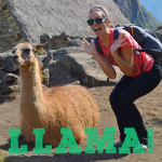 Inca Corn and Llamas: The Art of Exploring Machu Picchu